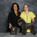 Cristyn Zloza and Aurora took 1st at Pet Pro Classic 2015