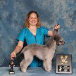Dallas Pet Pro Classic 2016