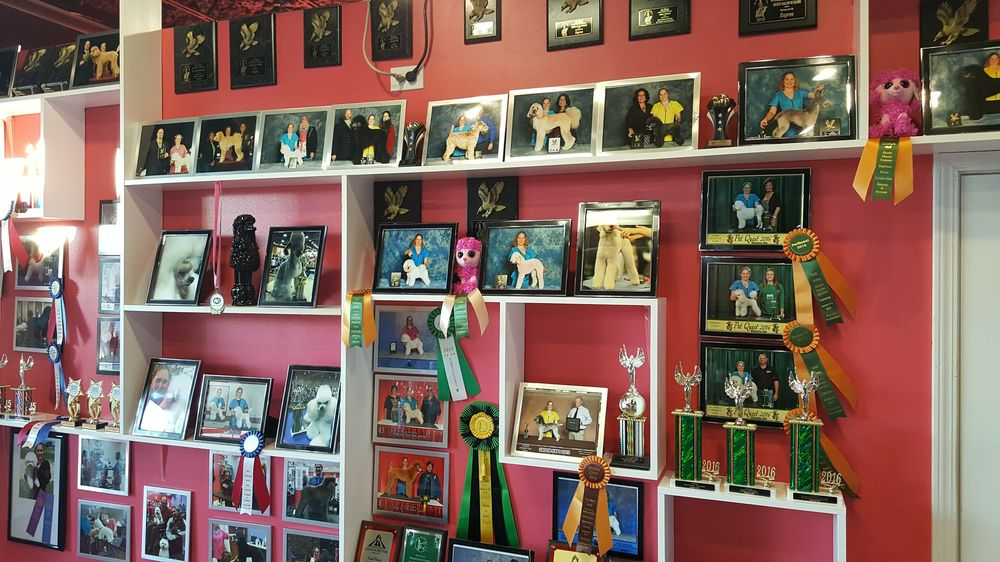 Spotted Paw Award Wall