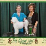 Pet Quest 2016