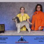 Atlanta Pet fair 2016